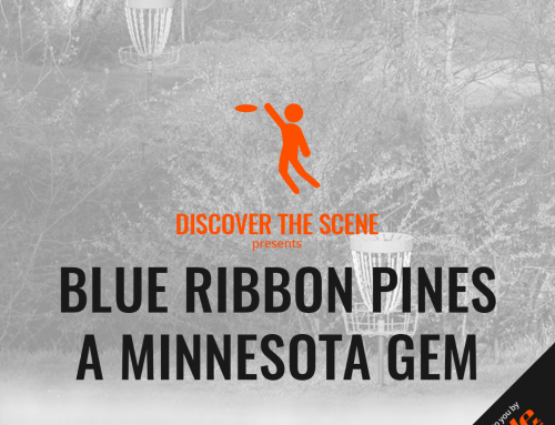 Blue Ribbon Pines – A Minnesota Gem