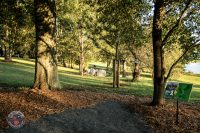 Discover the scene Winthrop Gold Disc Golf Course